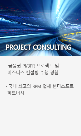 PROJECT CONSULTION